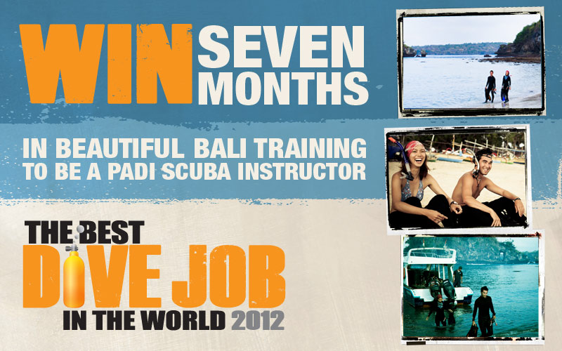 Best Dive Job in the World 2012 – It's here again!
