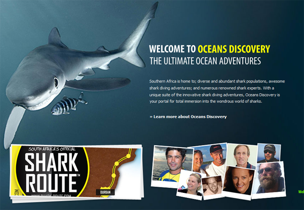 With passion and precision, the Oceans Discovery team has launched the first ever Shark Route